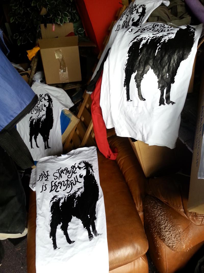 wordpress shirts