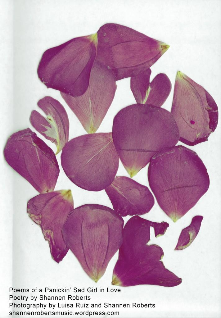 college poems cover print zine fest 2015